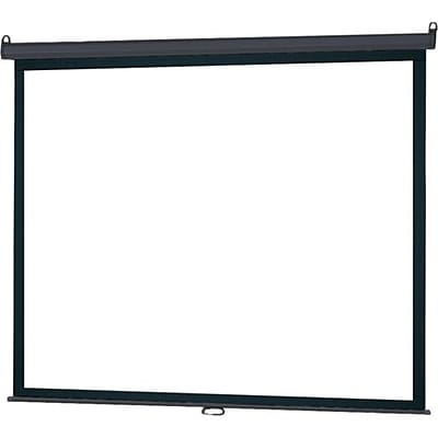 Infocus® SC-MAN 100 Manual Pull Down Projector Screen; 4:3, White Casing