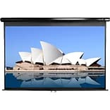 Elite Screens 100 Manual Wall and Ceiling Projection Screen; 4:3, Matte White