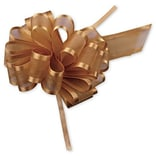 Bags & Bows® 4 Sheer Satin Edge Pull Bows, 12/Pack (PR819-27)