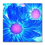 Trademark Fine Art Amy Vangsgard Pop Daisies VI Canvas 35x35 Inches