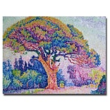 Trademark Fine Art Paul Signac The Pine Tree at St.Tropez, 1909 Canvas Art 24x32 Inches