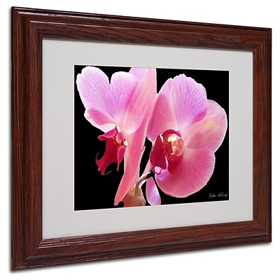 Kathie McCurdy Orchid Matted Framed Art - 16x20 Inches - Wood Frame