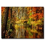 Trademark Fine Art Lois Bryan Bobs Creek Canvas Art 30x47 Inches