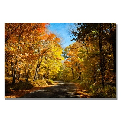Trademark Fine Art Lois Bryan Fall Walkway Canvas Art 16x24 Inches