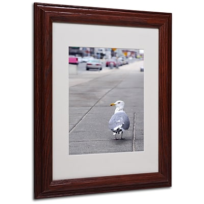 CATeyes Boston 4 Matted Framed Art - 11x14 Inches - Wood Frame