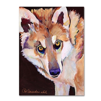 Trademark Fine Art Pat Saunders Night Eyes Canvas Art 14x19 Inches
