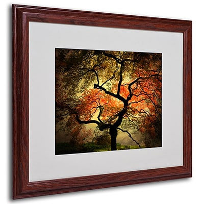 Philippe Sainte-Laudy Japanese Framed Matted Art - 16x20 Inches - Wood Frame