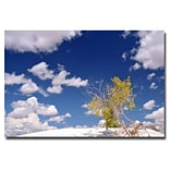Trademark Fine Art Philippe Sainte Laudy Clouds and Loneliness Canvas Art 30x47 Inches
