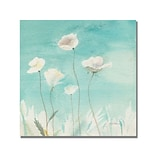 Trademark Fine Art Shelia Golden White Poppies Canvas Art. 18x18 Inches