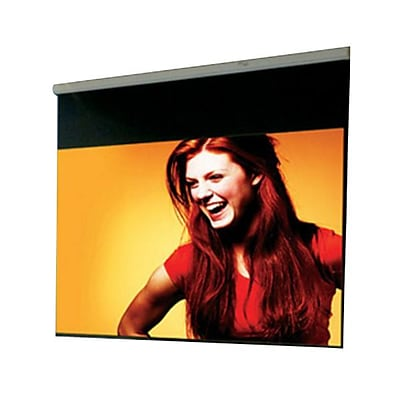 Draper 99 Luma Manual Projection Screen; MaxWhite