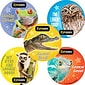 "SmileMakers® Animal Eye Exam Stickers, 2-1/2""H x 2-1/2""W, 100/Roll"