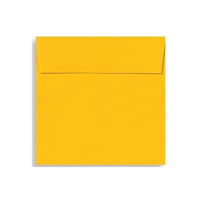 LUX 5 1/2 x 5 1/2 Square Envelopes 250/Box) 250/Box, Sunflower (EX8515-12-250)