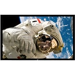 Elite Screens® ezFrame Series 106 Fixed Frame Projection Screen; 16:9, Black Casing