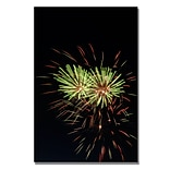 Trademark Fine Art Abstract Fireworks 35 30 x 47 Canvas Art