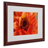 Trademark Fine Art Fiery Dahlia 16 x 20 Wood Frame Art