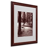 Trademark Fine Art Jardin du Luxembourg Chairs 16 x 20 Wood Frame Art