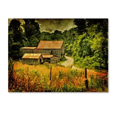Trademark Fine Art Country Road In Summer 22 x 32 Canvas Art