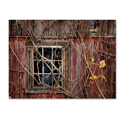 Trademark Fine Art Old Barn Window 16 x 24 Canvas Art