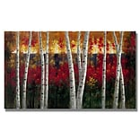 Trademark Fine Art Autumn 24 x 47 Canvas Art