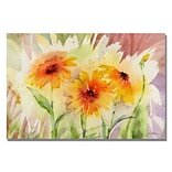 Trademark Fine Art Medow Daisey Trio 16 x 24 Canvas Art