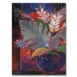 Trademark Fine Art Tropic Night 22 x 32 Canvas Art
