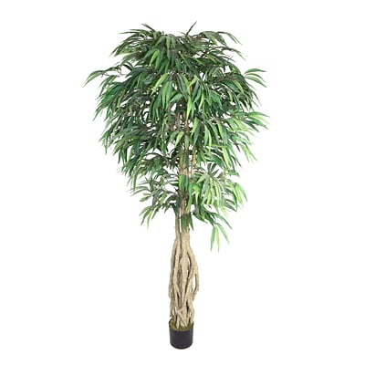 Laura Ashley 78 Willow Ficus Tree With Multiple Trunks