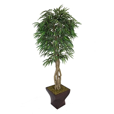 Laura Ashley 88 Willow Ficus Tree With Multiple Trunks in 17 Fiberstone Planter