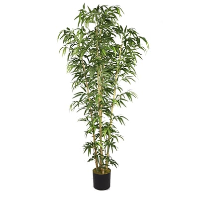 Laura Ashley 72 Natural Bamboo Tree