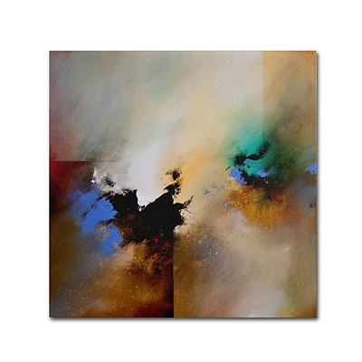 Trademark Fine Art Clouds Connected II 24 x 24 Canvas Art