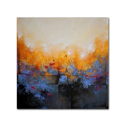 Trademark Fine Art My Sanctuary 14 x 14 Canvas Art