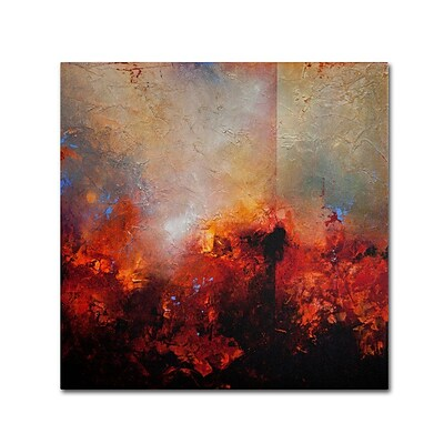Trademark Fine Art Red Earth 18 x 18 Canvas Art