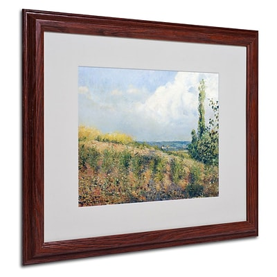 Trademark Fine Art The Approaching Storm 16 x 20 Wood Frame Art