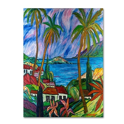 Trademark Fine Art Tropical Paradise 24 x 32 Canvas Art