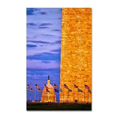 Trademark Fine Art America 16 x 24 Canvas Art