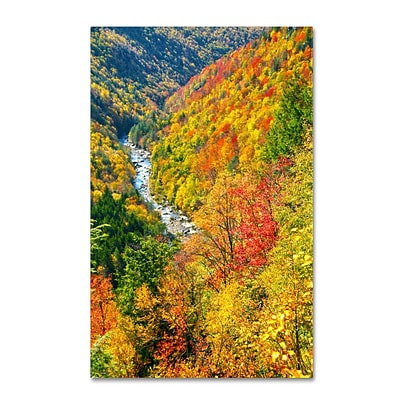 Trademark Fine Art Valley 16 x 24 Canvas Art