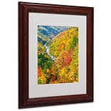 Trademark Fine Art Valley 11 x 14 Wood Frame Art