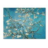 Trademark Fine Art Almond Branches In Bloom 1890 24 x 32 Canvas Art