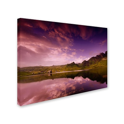 Trademark Fine Art Beyond the Purple Sky 30 x 47 Canvas Art