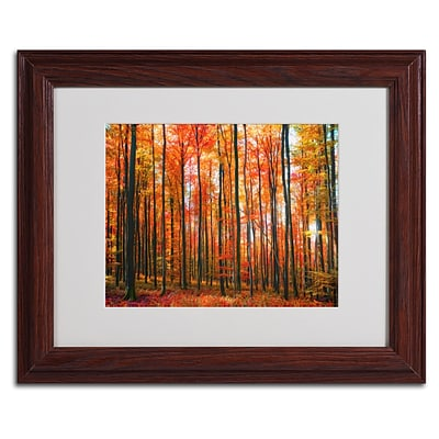 Trademark Fine Art Dominated 11 x 14 Wood Frame Art