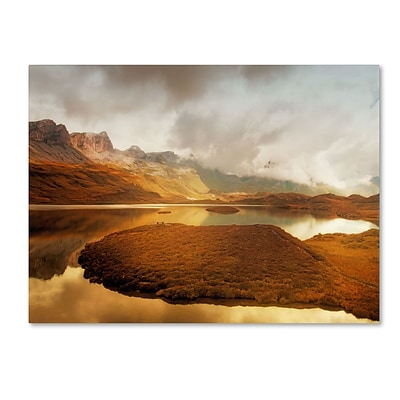Trademark Fine Art Shades of Gold 30 x 47 Canvas Art