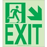 NYC Wall Mount Exit Sign, Down Right, 9X8, Flex, 7550 Glo Brite, MEA Approved