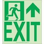 NYC Wall Mount Exit Sign, Forward/Right Side, 9X8, Flex, 7550 Glo Brite, MEA Approved