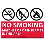 Notice Signs; (Graphics) No Smoking Matches Or Open Flames In This Area, 10X14, Rigid Plastic