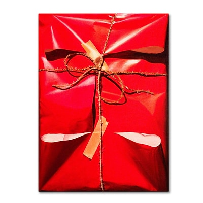 Trademark Fine Art Red Wrap 14 x 19 Canvas Art