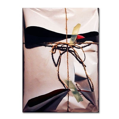 Trademark Fine Art White Wrap With Twine 35 x 47 Canvas Art
