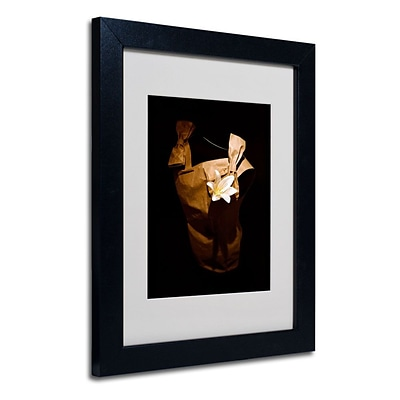Trademark Fine Art White Flower 11 x 14 Black Frame Art