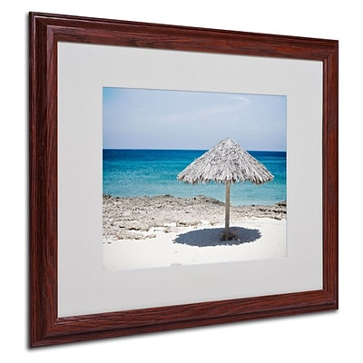 Trademark Fine Art Aruba Umbrella 16 x 20 Wood Frame Art