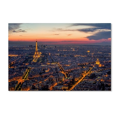 Trademark Fine Art From the Roofs of Paris 30 x 47 Canvas Art