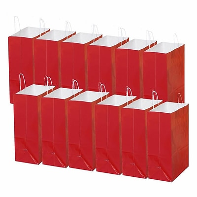S&S® Laminated Large Gift Bags, 12/Pack