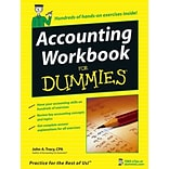 Accounting Workbook For Dummies John A. Tracy Paperback